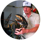 sakonnet lobster owner